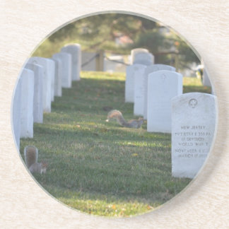 Squirrels playing in headstones drink coaster