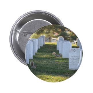 Squirrels playing in headstones pins