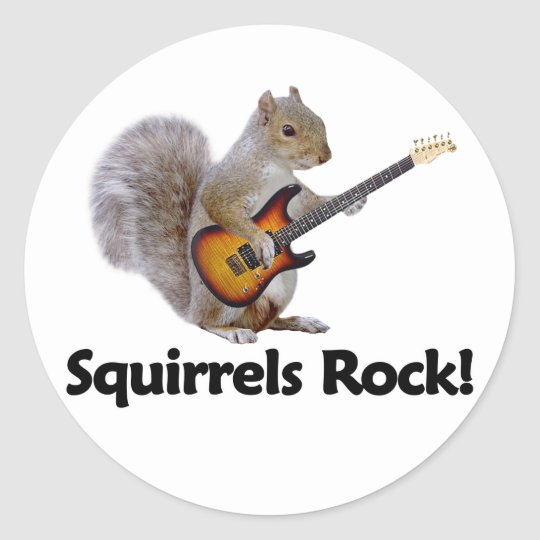 Squirrels Rock! Classic Round Sticker
