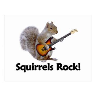 Squirrels Rock! Postcard