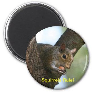 Squirrels Rule! 2 Inch Round Magnet