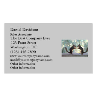 Squirrels Sharing a Peanut Photo Business Card