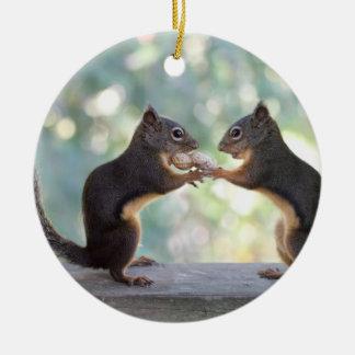 Squirrels Sharing a Peanut Photo Ornaments