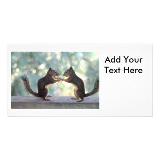 Squirrels Sharing a Peanut Photo Customized Photo Card