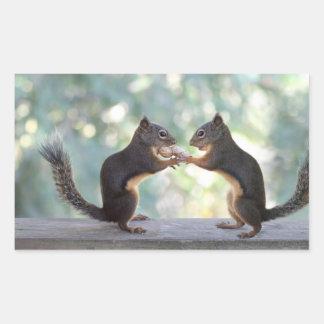 Squirrels Sharing a Peanut Photo Rectangular Sticker