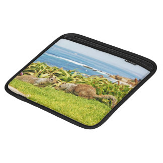 Squirrels Sleeve For iPads