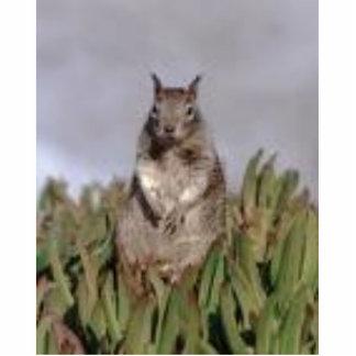 Squirrels Statuette