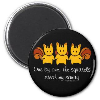 Squirrels steal my sanity 2 inch round magnet