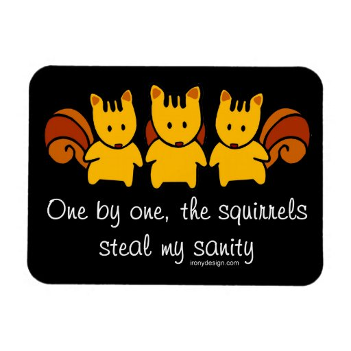 Squirrels steal my sanity flexible magnet