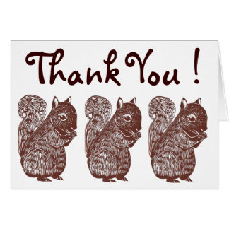 Squirrels Thank You Greeting Card