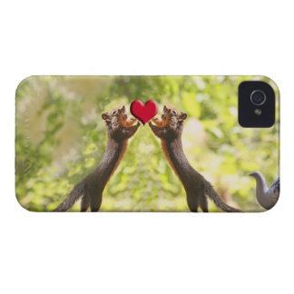 Squirrels with Heart iPhone 4 Case