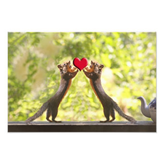 Squirrels with Heart Photo Print
