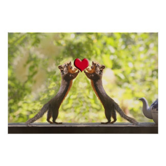 Squirrels with Heart Print