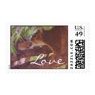 squirrily, franqueo del amor