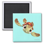 Squirt 1 2 inch square magnet