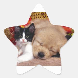Squished Star Sticker
