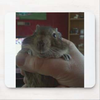 Squishy Face Degu Mouse Pad