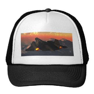 sr-71-blackbird-steven-palmer hats