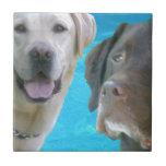 Sr. Blue y Otis de los laboratorios Azulejos Ceramicos