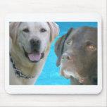 Sr. Blue y Otis de los laboratorios Tapete De Raton