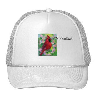 Sr Cardinal Hat Gorra