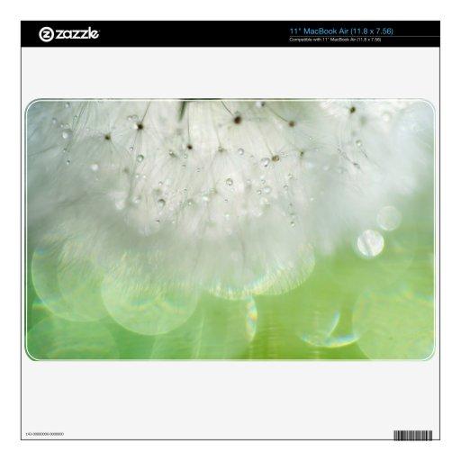 Sr. Dandelion. Luz interna MacBook Air 27,9cm Skins