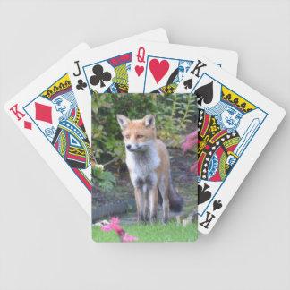 Sr. Fox Baraja