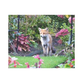 Sr. Fox Impresión En Lienzo Estirada