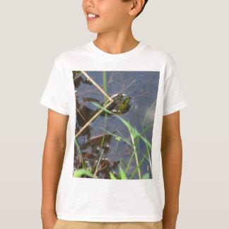 Sr. Frog Camisas