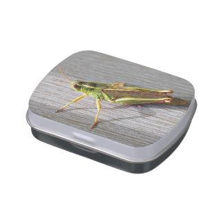 Sr. Grasshopper Candy Tin Frascos De Caramelos
