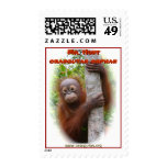 Sr. Hunt Orangutan Orphan Sello