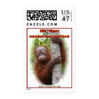 Sr. Hunt Orangutan Orphan Timbre Postal