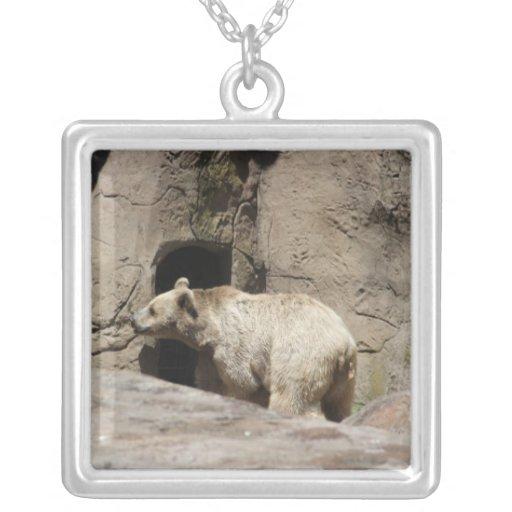 Sr. oso polar grímpola