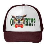 ¿Sr. Owl dice O RLY? Gorras De Camionero