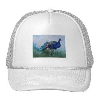 Sr Peacock Hat Gorra