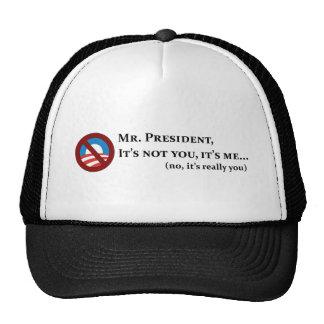 Sr. presidente, no es usted, él es yo… gorro de camionero