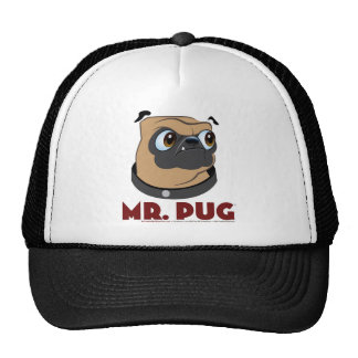Sr Pug Clothes Gorra