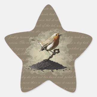Sr Robin Finds la llave pegatinas de la estrella Pegatina Forma De Estrella