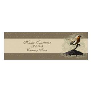 Sr. Robin Finds la llave, plantilla de la tarjeta Tarjetas De Visita Mini