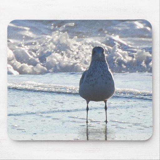 Sr. Seagull Mousepad