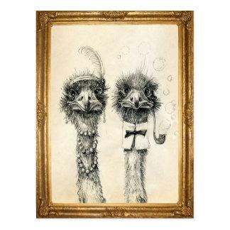 Sr. y señora Ostrich enmarcada Postales