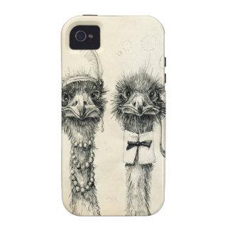 Sr. y señora Ostrich iPhone 4 Fundas