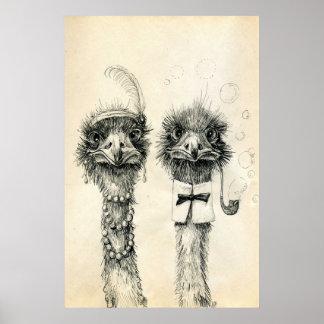 Sr. y señora Ostrich Póster