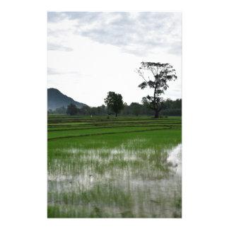 Sri Lanka rice fields Stationery