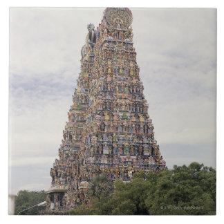 Sri Meenakshi Amman Temple, Madurai, Tamil Nadu, Large Square Tile