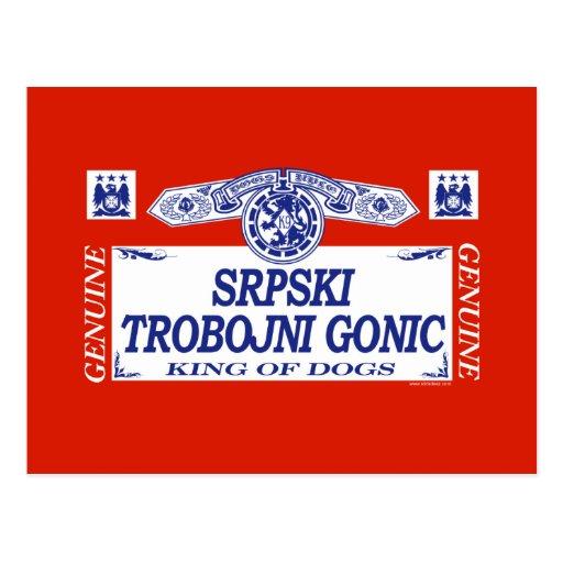Srpski Trobojni Gonic Postales