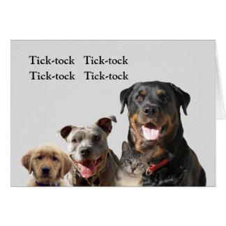 Srta. adorable You Card de los mascotas Tarjeta De Felicitación