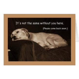Srta. amarilla You Card del perro esquimal I del h Tarjeta De Felicitación
