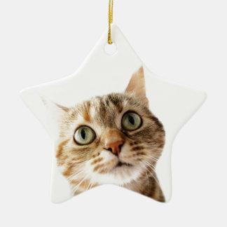 Srta. Cattitude de Lil Ornamento De Navidad