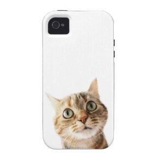 Srta. Cattitude de Lil Case-Mate iPhone 4 Fundas